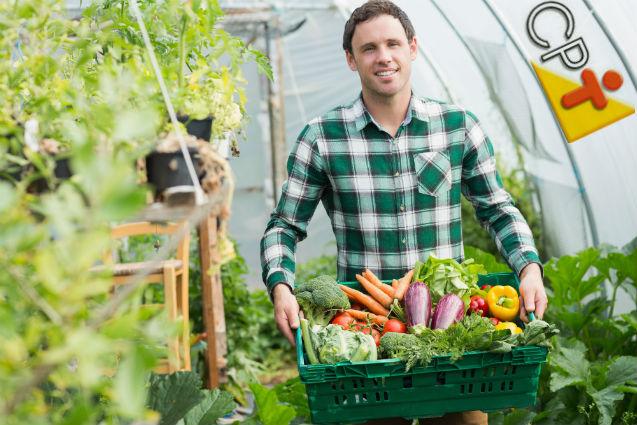 Especialista: Agricultores devem aprender a comercializar seus produtos   Artigos Cursos CPT