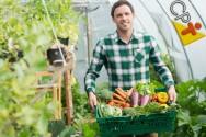 Especialista: Agricultores devem aprender a comercializar seus produtos