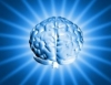 Cérebro, um armazém de recordações