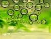 Biodiesel, o início da caminhada para a sustentabilidade