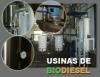 Usinas de biodiesel e os graus de verticalização da produção