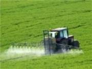 Brasil disponibiliza linha de financiamento para incentivar a produção agrícola em países africanos
