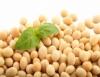 Receitas com soja precisam ser inseridas nos hábitos alimentares da população