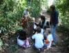 Educação ambiental infantil desenvolve a consciência ecológica da criança