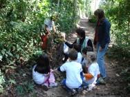https://cptstatic.s3.amazonaws.com/imagens/enviadas/materias/materia1879/m-educacao-ambiental.JPG