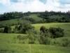 Carbono no solo e emissões de gases de efeito estufa