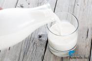 Microrganismos do leite