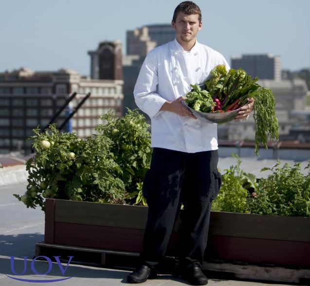 Sim, plantar temperos, hortaliças e legumes em terraços é possível!    Artigos Cursos UOV