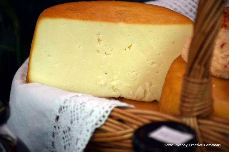 Dicas para montar fábrica de queijo Canastra