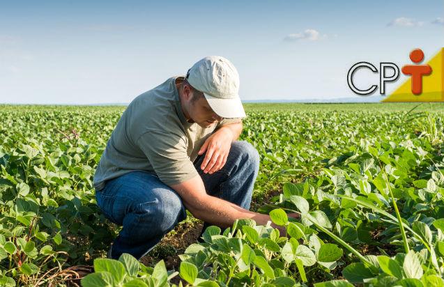 Especialista: Atrás de um agricultor de sucesso há sempre um Engenheiro Agrônomo!   Artigos Cursos CPT