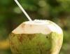 Água-de-coco, lucro refrescante
