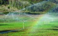 A irrigação é uma técnica que já se firmou como sendo grande aliada para obtenção de uma elevada produção de alimentos.
