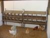 Instalações são o primeiro passo para a implantação da granja