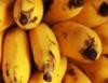 Banana tem pesquisa que indica condições favoráveis para seu plantio