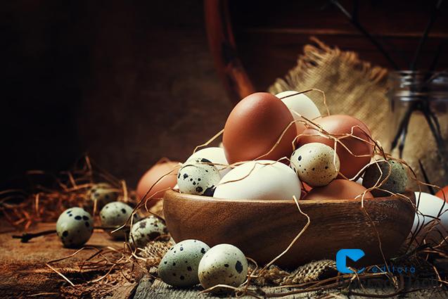 Ovos de galinha e codorna