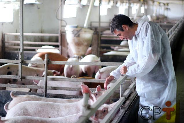 Proteção ambiental na suinocultura: saiba mais!    Artigos Cursos CPT