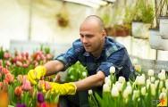 Cultive várias espécies de flores e lucre mais