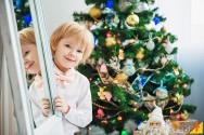 Dica para o seu natal: decore sua casa com um pinheiro de verdade!