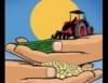 Agronegócio brasileiro tem novo recorde de exportação