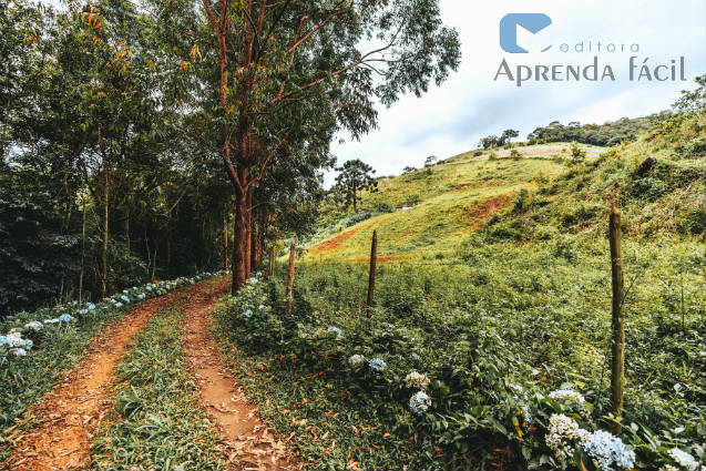 Turismo rural sustentável: 5 lugares para curtir nas férias