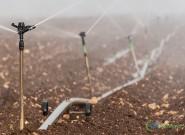 Irrigação na lavoura