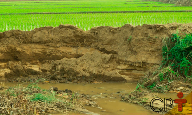 O que mais provoca a erosão do solo?   Dicas Cursos CPT