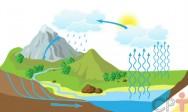 Ciclo hidrológico: como explicar esse conceito?