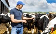 O mundo pede uma pecuária racional, justa e correta com os animais