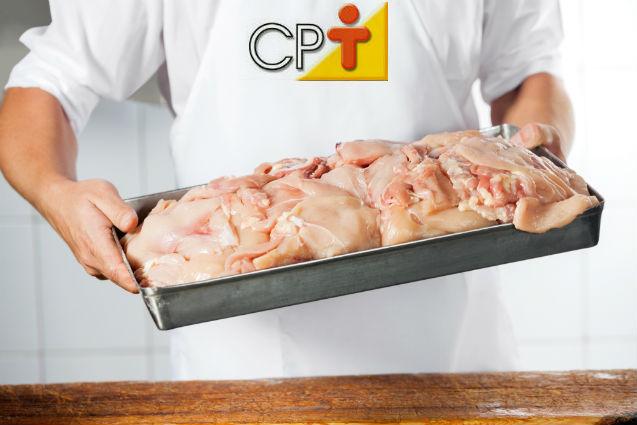 Processamento de carne de frango: paredes e teto da cozinha   Artigos Cursos CPT
