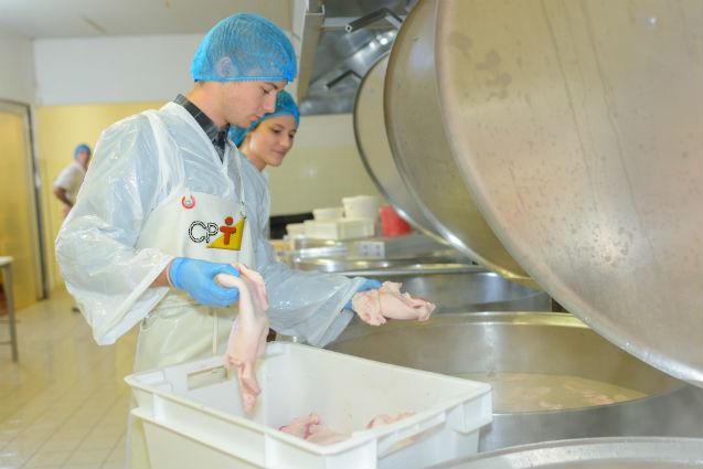 Miniabatedouro de frango: como abrir? Quais passos seguir?   Artigos Cursos CPT