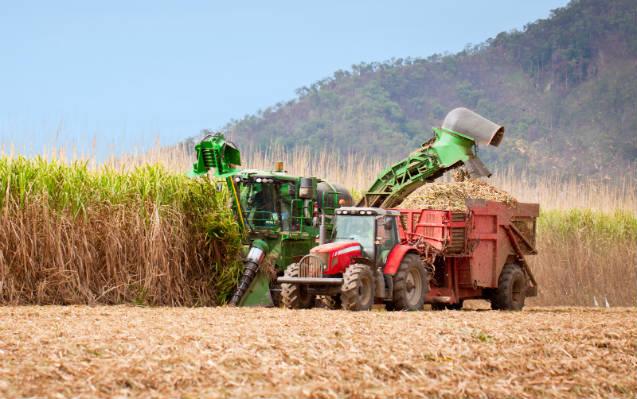 Vendas de etanol ultrapassam 80 milhões de litros em fevereiro de 2019
