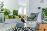 Como cultivar flores e plantas ornamentais em apartamentos