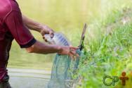Solos arenosos são indicados para a construção de viveiros de tilápias?