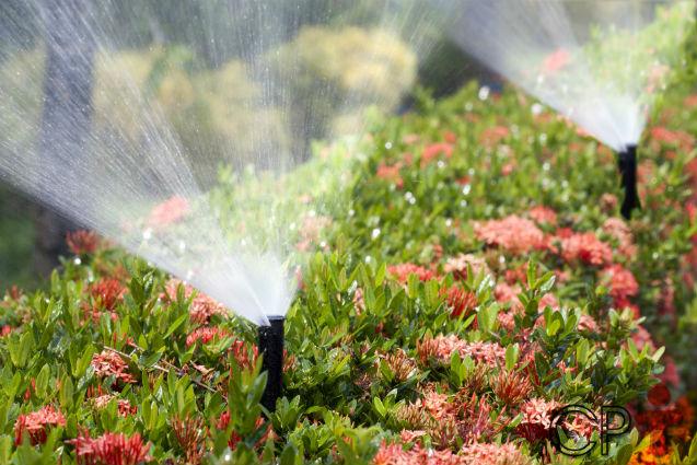 Especialista: Sistema de irrigação com linhas enterradas tem mais vida útil   Artigos Cursos CPT