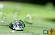 Transpiração, evaporação e evapotranspiração: como explicar?