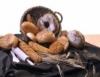 Farinha de trigo pode ser especial, comum, integral e gérmen de trigo