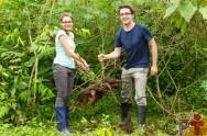 Como as plantas absorvem os nutrientes do solo? Através de suas raízes!
