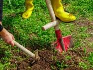 Vou coletar porções de terra para análise. Quais equipamentos devo utilizar?