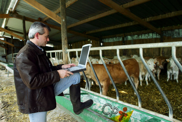 Inventário da propriedade rural: por que e como fazer?   Artigos Cursos CPT
