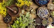 Colheita e secagem de plantas medicinais