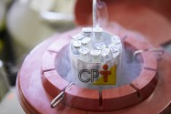 Inseminação Artificial em éguas: sêmen fresco, resfriado ou congelado?