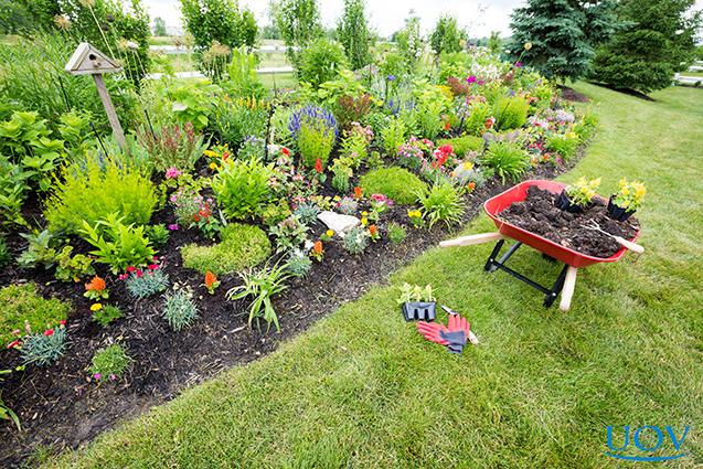 Jardinagem e manutenção de jardins