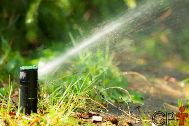 Sistema de irrigação com linhas enterradas: o caro que sai barato!   Notícias Cursos CPT