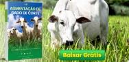 Baixe nosso E-book Tudo sobre Alimentação de Gado de Corte