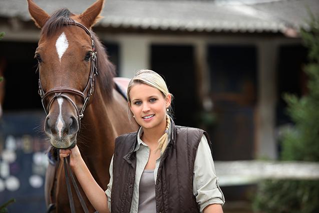 Cavalo e criador