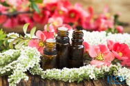 Benefícios da terapia floral