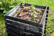 Informações importantes sobre a compostagem