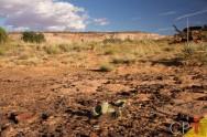 4 métodos para recuperar pastagens degradadas
