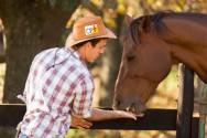 Paixão por cavalos? Estude, aprenda e seja um domador!