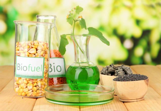 Uso de biocombustível pode reduzir emissões de CO2 em 70%